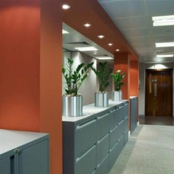 Orange Painted Walls with Grey Furniture
